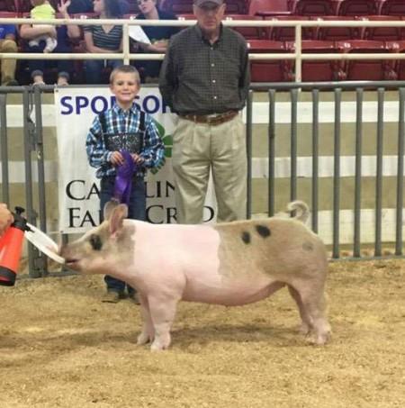 Ashton Seal with the Grand Champion Gilt at the 2017 Mountain State Fair
