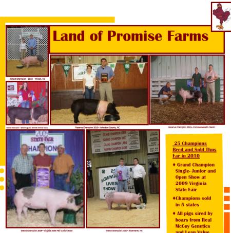 2010 Virginia State Fair Flyer – 1