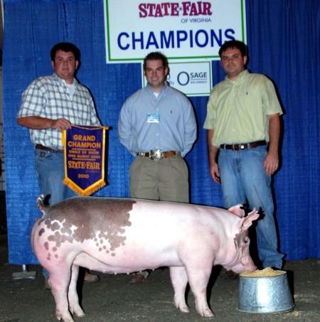 2010 Grand Champion Open Market Hogs Virginia State Fair
