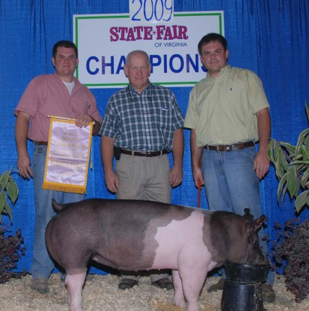 2009 Reserve Grand Champion Open Market Hogs Virginia State Fair